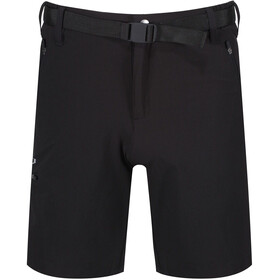 Regatta Xert II Stretch Shorts Heren, black
